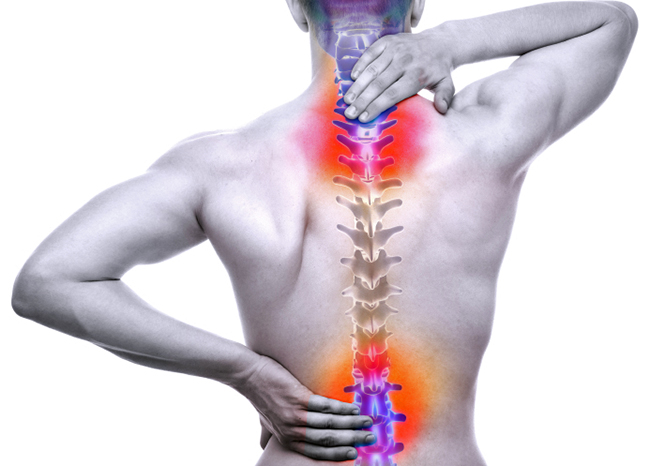 Find an Experienced Spinal Cord Injury Attorney